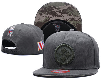 NFL Pittsburgh Steelers Team Logo Salute To Service Adjustable Hat F01