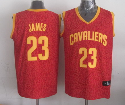 Cleveland Cavaliers #23 LeBron James Red Leopard Print Fashion Jersey