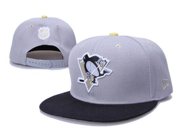 Pittsburgh Penguins 17