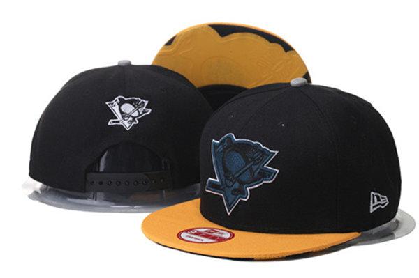 Pittsburgh Penguins 13