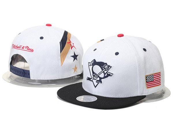Pittsburgh Penguins 16