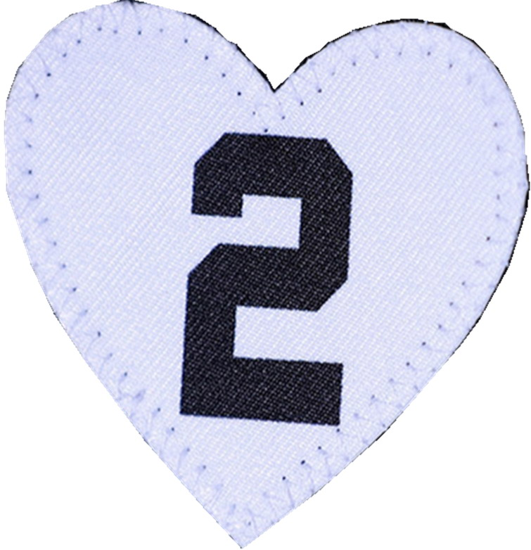 Kobe's Daughter Gianna #2 patch